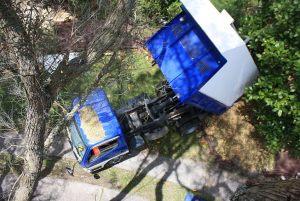tipper-truck-arbortechnix-wood-chip-tree-work-auckland